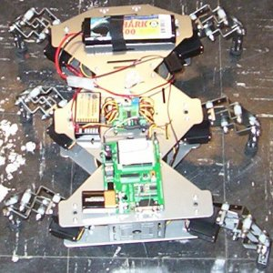 the hexapod